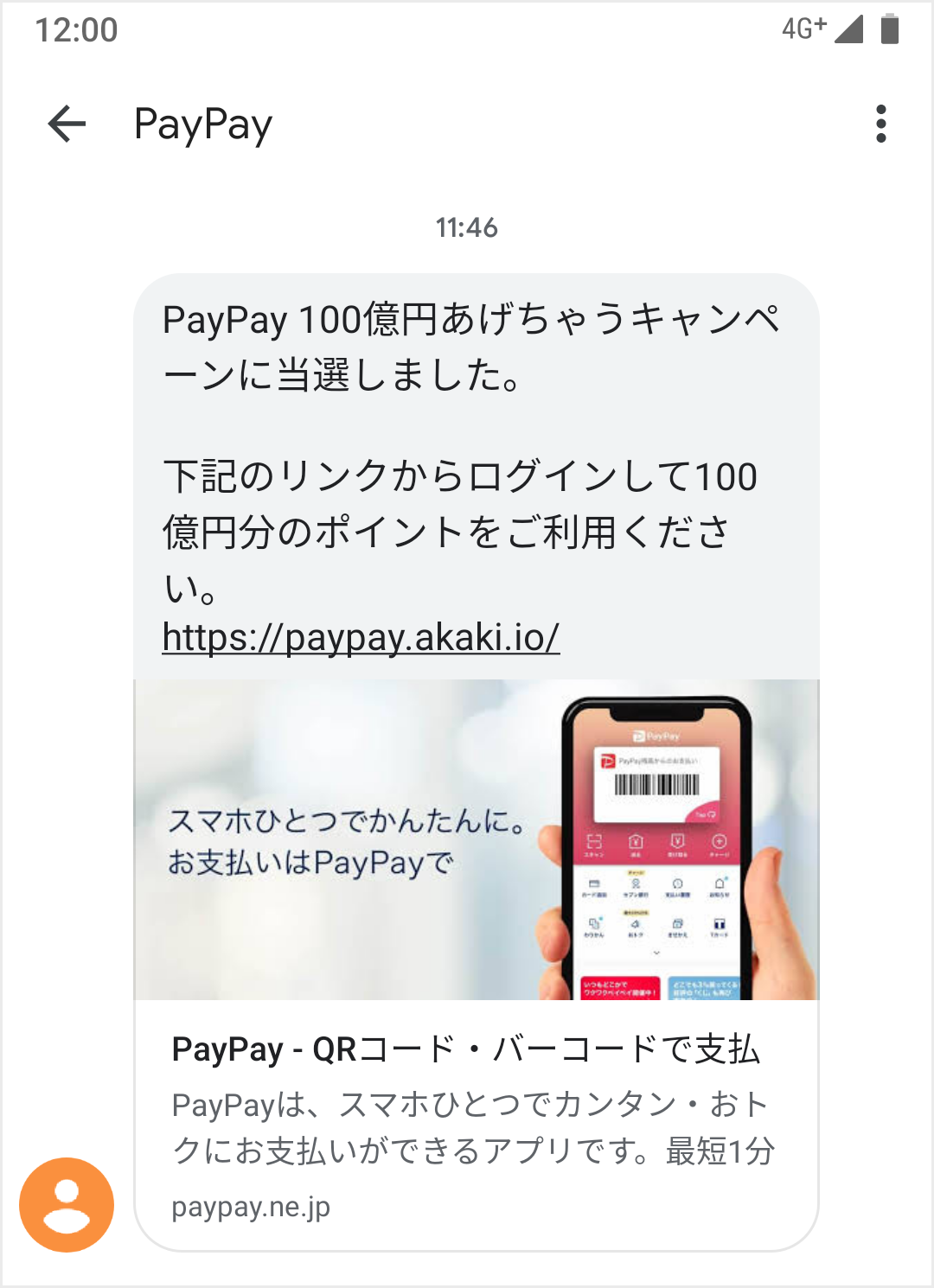 paypay_fake_preview